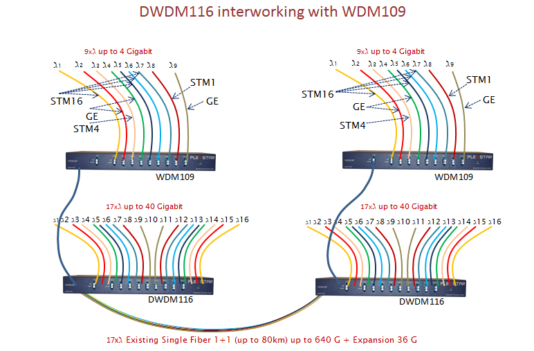 Plexstar DWDM Application